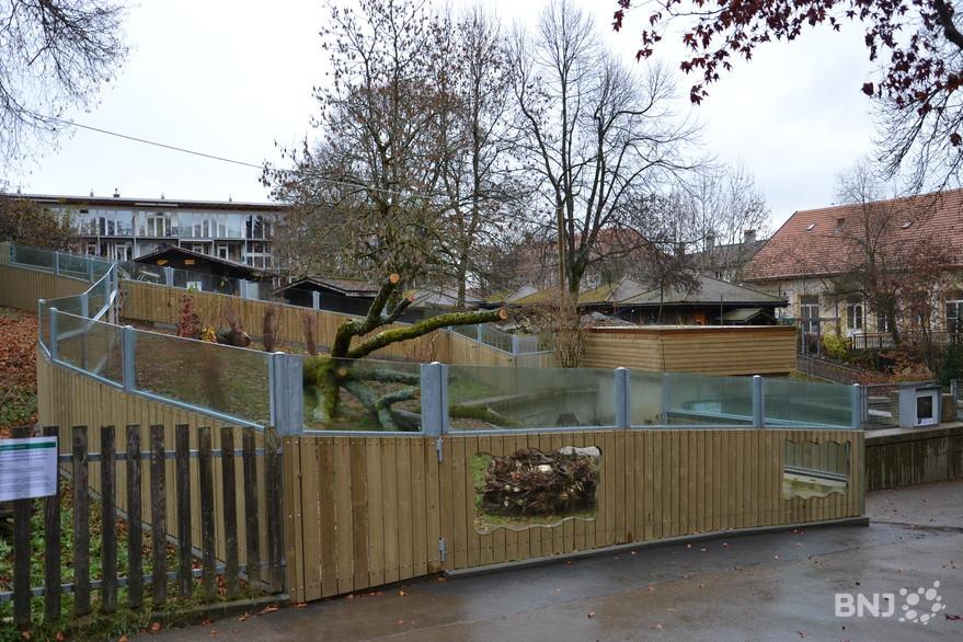 Le zoo du Bois du Petit Ch u00e2teau s'agrandit RTN votre radio régionale # Chateau Du Petit Bois